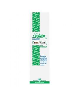 Ledum Palustre The Wall 100 ML