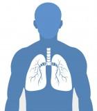 Respiratory Apparatus
